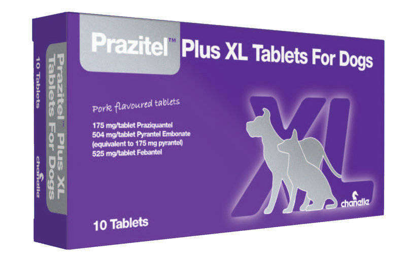Prazitel XL Tablet for Dogs Thumbnail