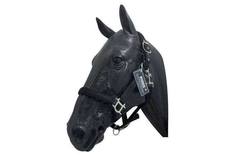 Comfort Adjustable Headcollar Thumbnail