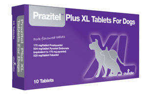 Prazitel XL Tablet for Dogs