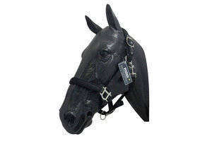 Comfort Adjustable Headcollar